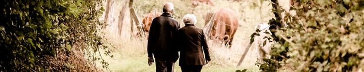 готовимся к пенсии, Готовимся к пенсии: Хватит ли вам денег в старости?