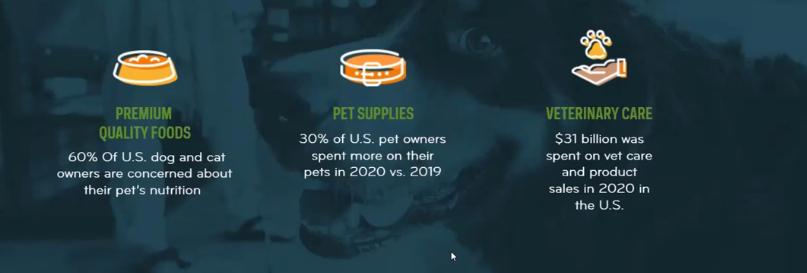 Pet Industry PAWZ